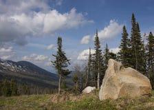 La madera contra las montañas Fotografía de archivo