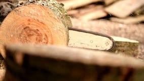 La madera cortó para los registros de la leña metrajes