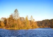 La madera del otoño en el banco del lago hermoso grande Foto de archivo