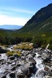 La madera del parque del verde del cielo azul de la naturaleza de la montaña se nubla el reflejo del lago agradable Foto de archivo libre de regalías