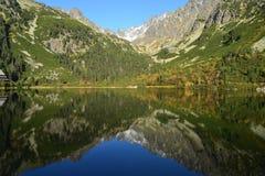 La madera del parque del verde del cielo azul de la naturaleza de la montaña se nubla el reflejo del lago agradable Imagen de archivo