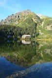 La madera del parque del verde del cielo azul de la naturaleza de la montaña se nubla el reflejo del lago agradable Imágenes de archivo libres de regalías