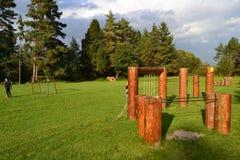 La madera del verde de la naturaleza de la montaña se nubla el parque Fotos de archivo