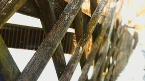 la madera es mágica Imágenes de archivo libres de regalías