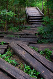 La madera registra camino al puente foto de archivo