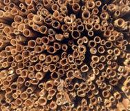 La madera registra la pila para las ideas interesantes del fondo para los fondos interesantes y creativos imagenes de archivo