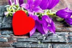 La madera roja del corazón miente en tablero quemado negro, Imagen de archivo