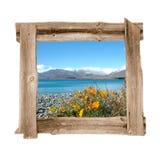 La madera vieja enmarca el resorte Fotos de archivo libres de regalías