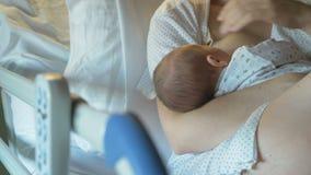 La madre amamanta un recién nacido en hospital moderno almacen de video