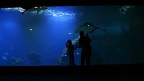 La madre con el niño de Cutie está visitando Oceanarium el día de madres La madre muestra a muchacha este mundo hermoso e interes almacen de video
