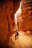 La madre con il figlio sta facendo un'escursione nel parco nazionale del canyon di Bryce, Utah, U.S.A. fotografia stock libera da diritti