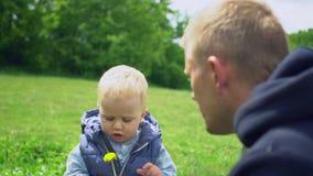 La madre dà il dente di leone giallo al padre ed al figlio in parco stock footage