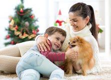 La madre de la familia y su hijo juegan con el perro en el árbol de navidad imagen de archivo
