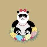 La madre dell'orso di panda di Pasqua incuba le uova Fotografie Stock Libere da Diritti