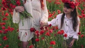 La madre e la figlia del primo piano vanno tenersi per mano sul campo di fioritura del papavero al tramonto, movimento lento archivi video