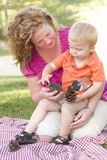 La madre ed il figlio parlano dei coni del pino in sosta Immagine Stock Libera da Diritti