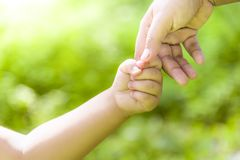 La madre está celebrando las manos con el muchacho del muchacho en el salvaje De común acuerdo caminando adelante fotos de archivo libres de regalías