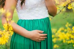 La madre futura cammina nel giardino di fioritura immagini stock libere da diritti