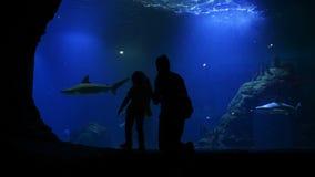 La madre y la hija están visitando Oceanarium el día del ` s de la madre Los pescados están nadando bajo el agua Están teniendo m metrajes