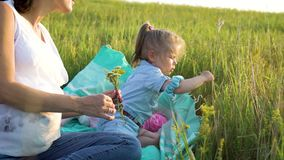 La madre y la hija felices atractivas comparten las flores de observación del amor juntas en campo de hierba en la manta almacen de metraje de vídeo