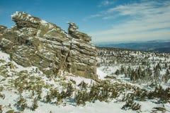 La maggior parte della montagna coperta di alberi e di neve Fotografie Stock Libere da Diritti