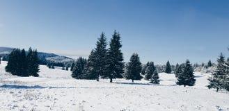 La magie de l'hiver images stock