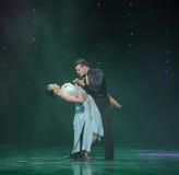 La magie de la danse du monde de l'Autriche de danse-le d'amour-flamant Image stock