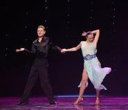 La magie de la danse du monde de l'Autriche de danse-le d'amour-flamant Photos libres de droits