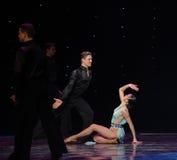 La magie de la danse du monde de l'Autriche de danse-le d'amour-flamant Photos stock
