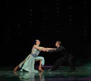 La magie de la danse du monde de l'Autriche de danse-le d'amour-flamant Photo libre de droits