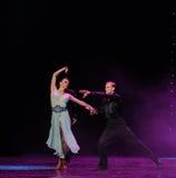 La magie de la danse du monde de l'Autriche de danse-le d'amour-flamant Images stock