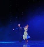 La magie de la danse du monde de l'Autriche de danse-le d'amour-flamant Photographie stock libre de droits