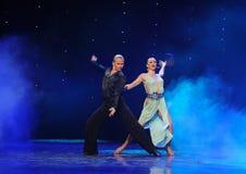 La magie de la danse du monde de l'Autriche de danse-le d'amour-flamant Photographie stock