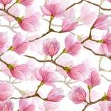La magnolia d'aquarelle fleurit le modèle sans couture Assaisonnez l'illustration tirée par la main pour le textile, invitations, Photographie stock