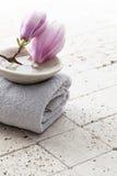 La magnolia florece en la taza de agua de piedra con el elemento de madera Foto de archivo