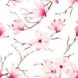 La magnolia fragile fiorisce il modello senza cuciture di vettore illustrazione di stock