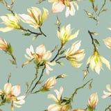 La magnolia gialla fiorisce su un ramoscello su fondo verde chiaro Reticolo senza giunte Pittura dell'acquerello Disegnato a mano Immagine Stock