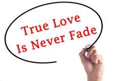 La main écrivant l'amour vrai est ne se fanent jamais sur le conseil transparent Photos stock