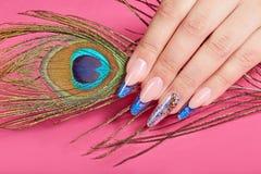 La main avec de longs ongles manucurés français bleus artificiels et le paon font varier le pas photographie stock