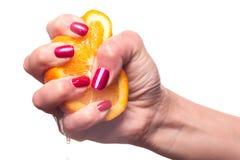La main avec des ongles manucurés a peint un rouge brillant profond photographie stock