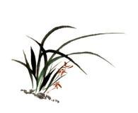 La main-Chine décorative magnifique distinguée traditionnelle chinoise, orchidée d'encre Photo stock
