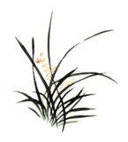 La main-Chine décorative magnifique distinguée traditionnelle chinoise, orchidée d'encre Photos stock