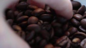 La main d'homme empêche le cafè non moulu de grain clips vidéos