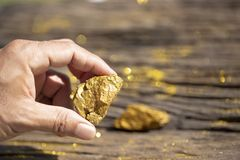 La main d'homme tenant les minerais purs d'or avec la lumière d'or sur vieux courtisent photographie stock