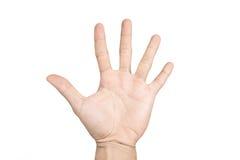 La main d'isolement montre le numéro cinq images libres de droits