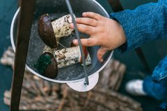 La main d'un enfant met des champignons dans un chapeau de lanceur, vue supérieure photos libres de droits