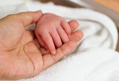 La main de chéri de main de la mère nouveau-née de fixation Photos libres de droits