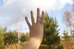 La main de la femme est le numéro quatre photos libres de droits