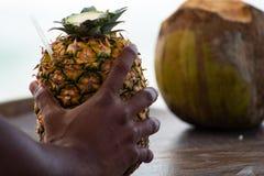 La main de l'homme dominicain tenant un cocktail de colada de pina a servi dans l'ananas, dans une plage tropicale en R?publique  photographie stock libre de droits