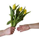 Donner des fleurs photo libre de droits